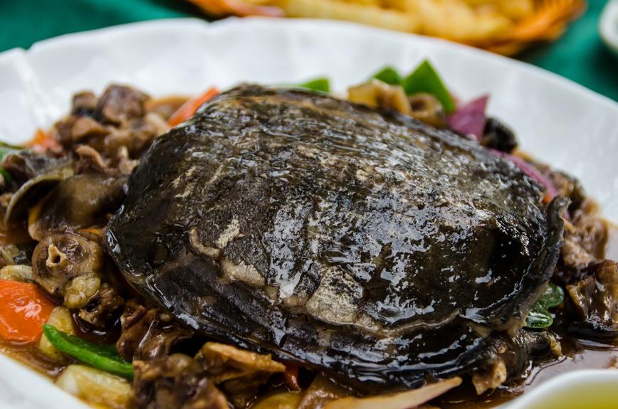 Мясо черепахи