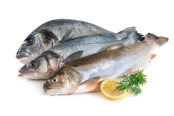 Определение качества рыбы