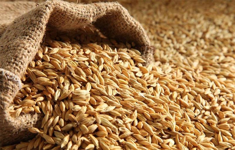 Свойства зерна